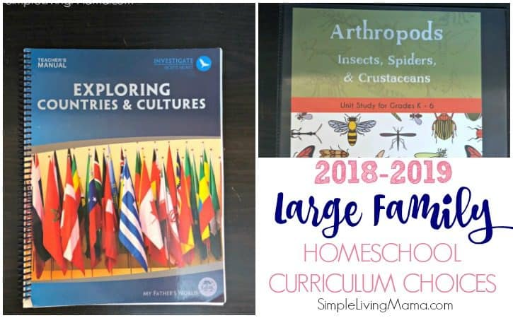 Large Family Homeschool Curriculum Choices 2018-2019