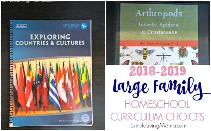 Large Family Homeschool Curriculum Choices 2018-2019