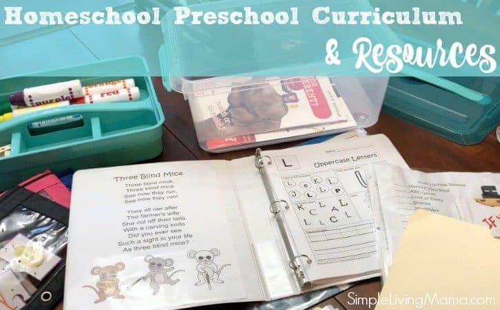 Three Year Old Homeschool Preschool Resources and Curriculum Choices