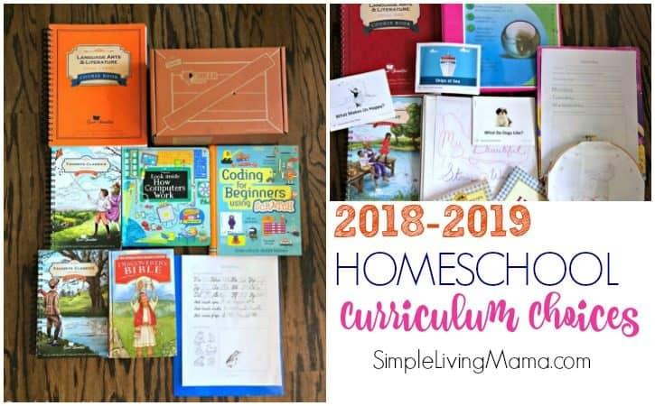 Elementary Homeschool Curriculum Choices