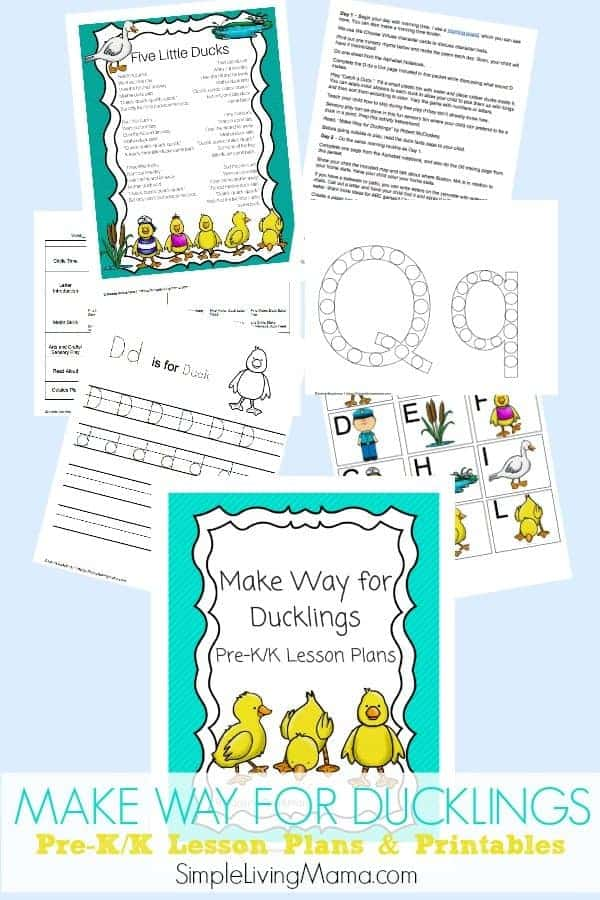 Introduce your child to ducks with Make Way for Ducklings Pre-K/K lesson plans and printables.
