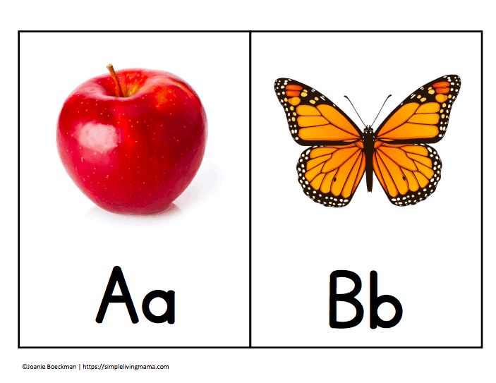 photo relating to Abc Flash Cards Free Printable referred to as Printable ABC Flashcards Pack with Correct Shots - Basic