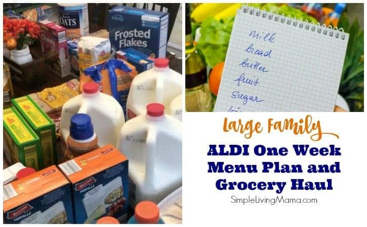 Large Family ALDI 1 Week Meal Plan and Grocery Haul