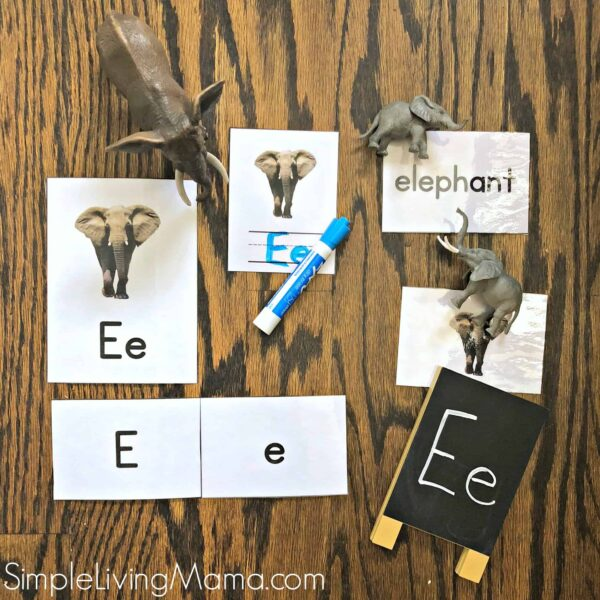 E is for elephant flashcards