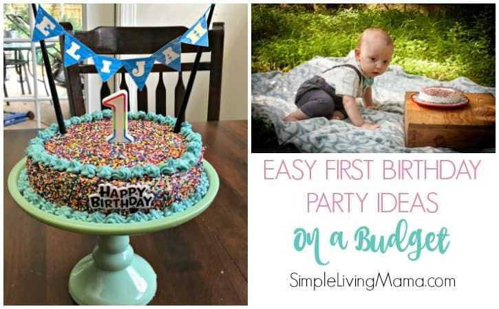 Easy First Birthday Party Ideas On a Budget