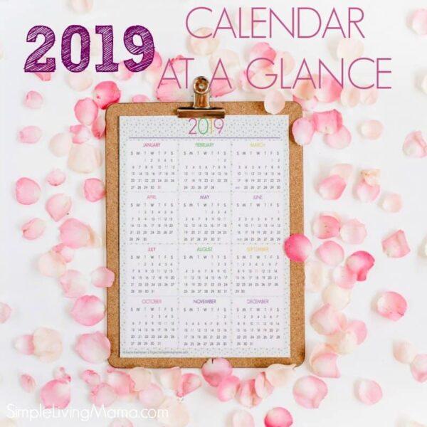 2019 colorful calendar at a glance