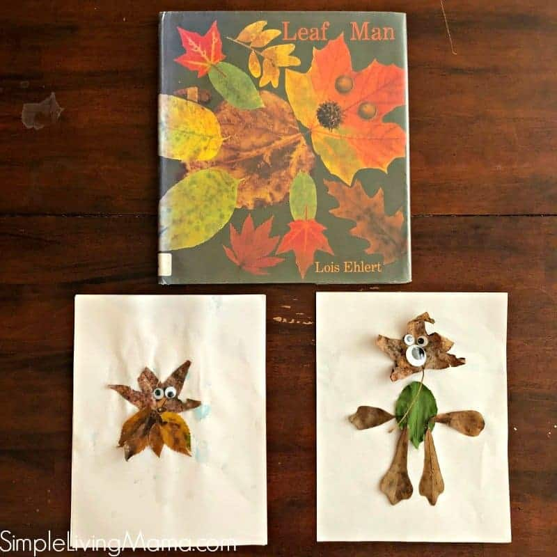 Leaf Man activities are perfect for preschoolers! Use natural materials to create a leaf man of your own!