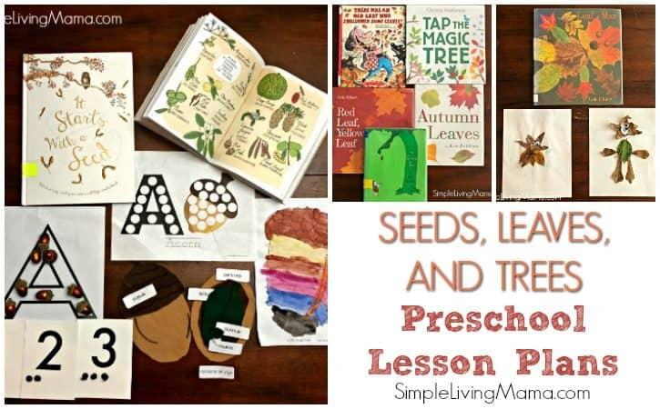 Leaf Theme Preschool and Kindergarten Lesson Plans