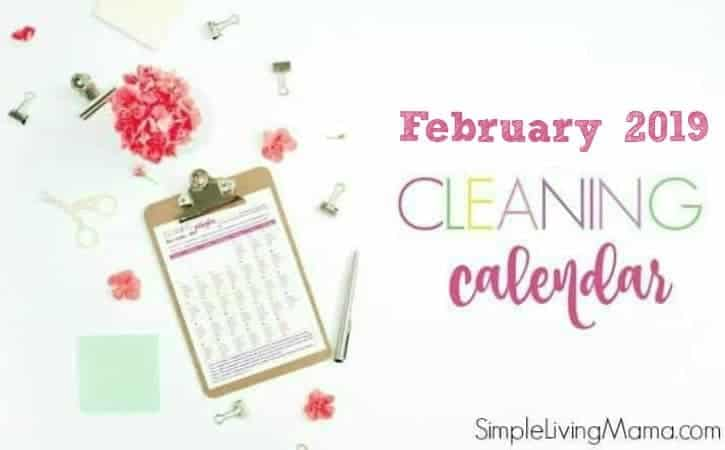 February 2019 printable monthly cleaning schedule and calendar.