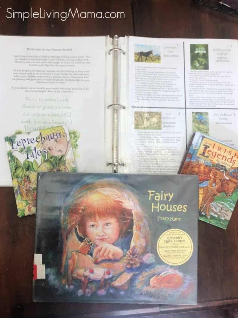 Books and stories from Ireland