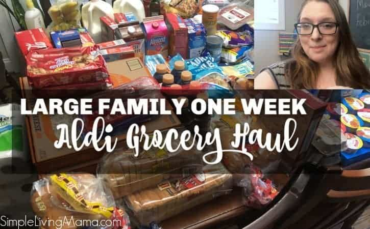 Large Family Aldi Meal Plan & Grocery Haul – Summer