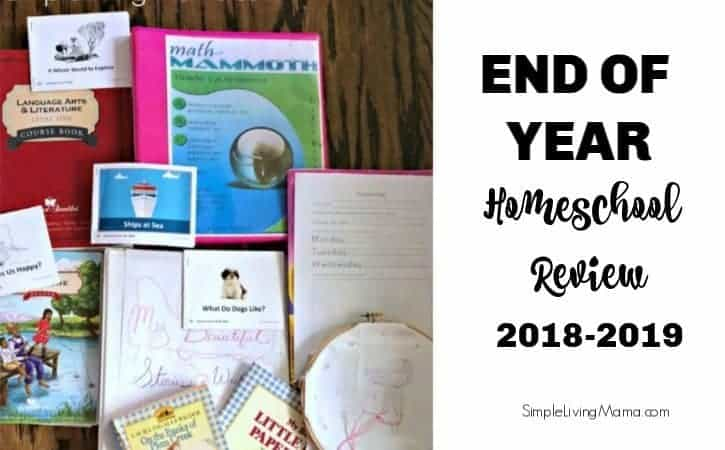 End of Year Homeschool Review 2018-2019