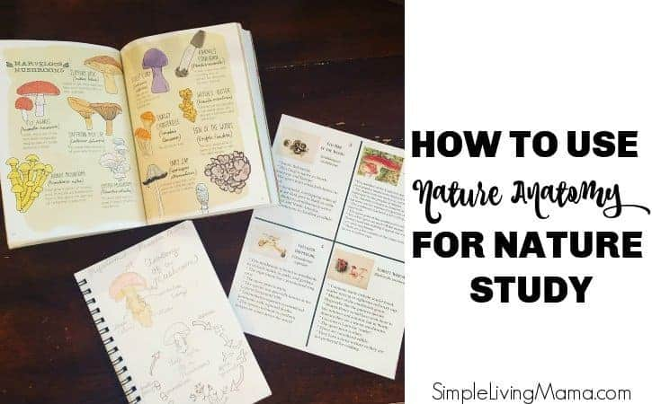 How To Use Nature Anatomy for Nature Study