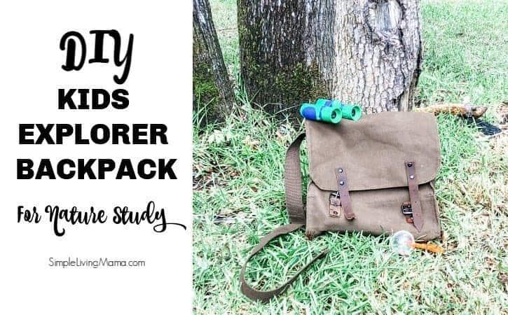 DIY Kids Explorer Kit for Nature Study