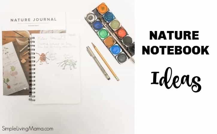 Nature Notebook Ideas