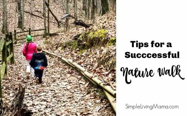Tips for Going on a Nature Walk