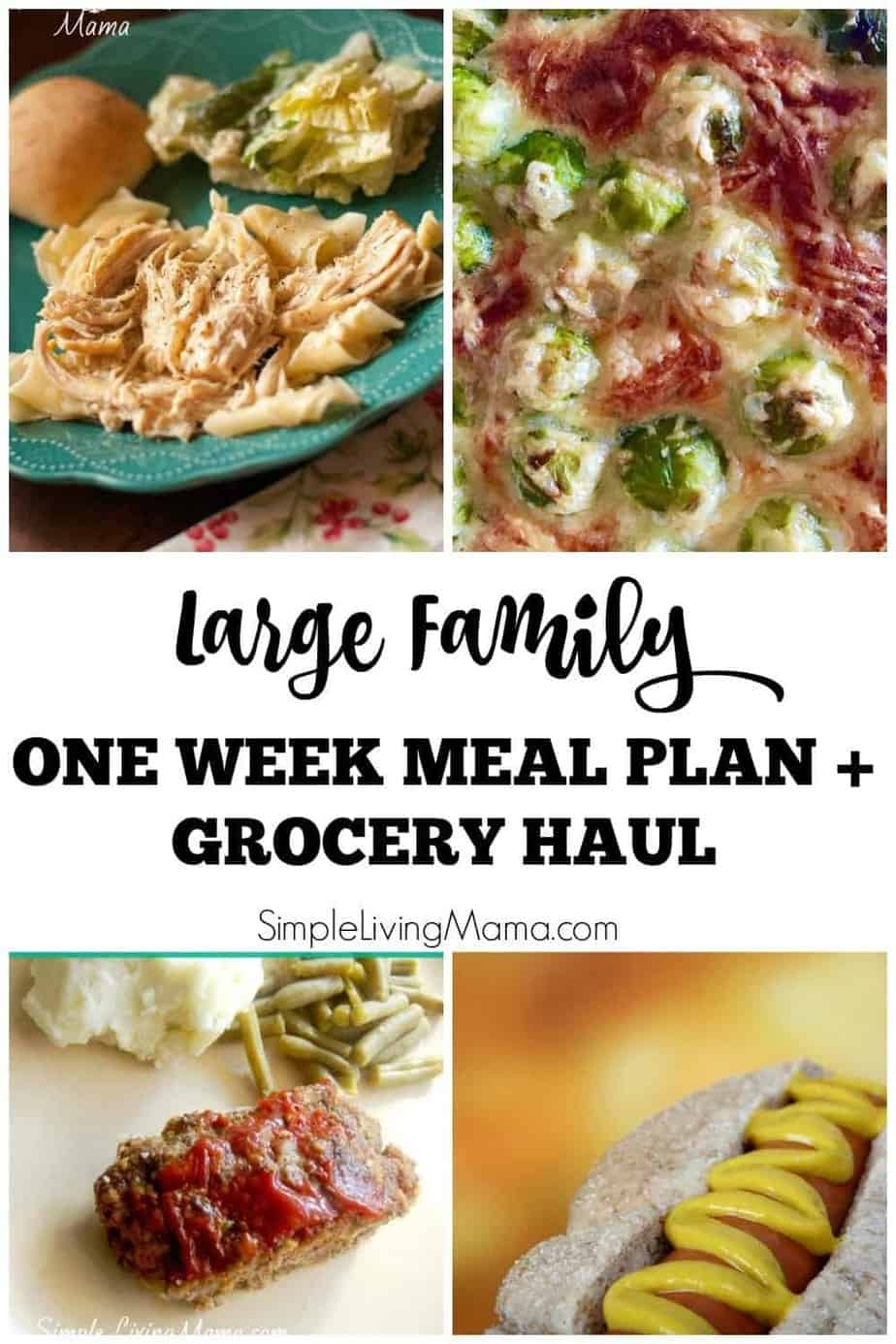 Walmart Grocery Haul and Meal Plan - Simple Living Mama