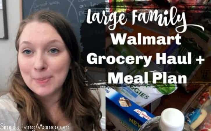 Walmart Grocery Haul and Meal Plan