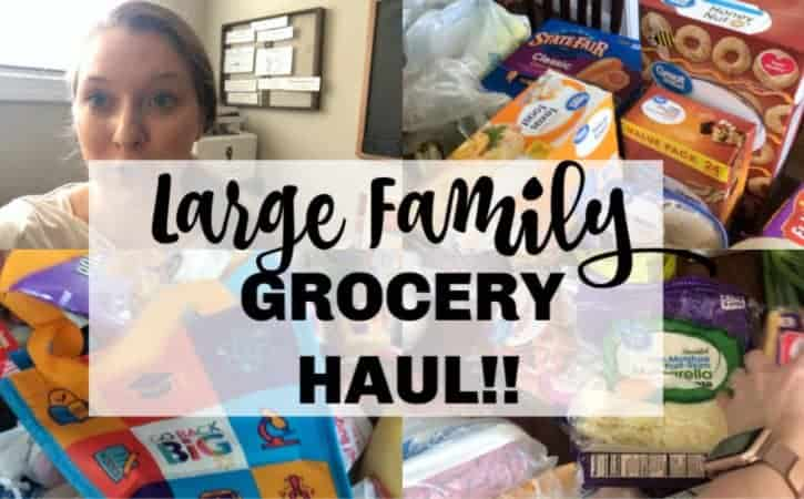 HUGE Large Family Meal Plan & Groceries