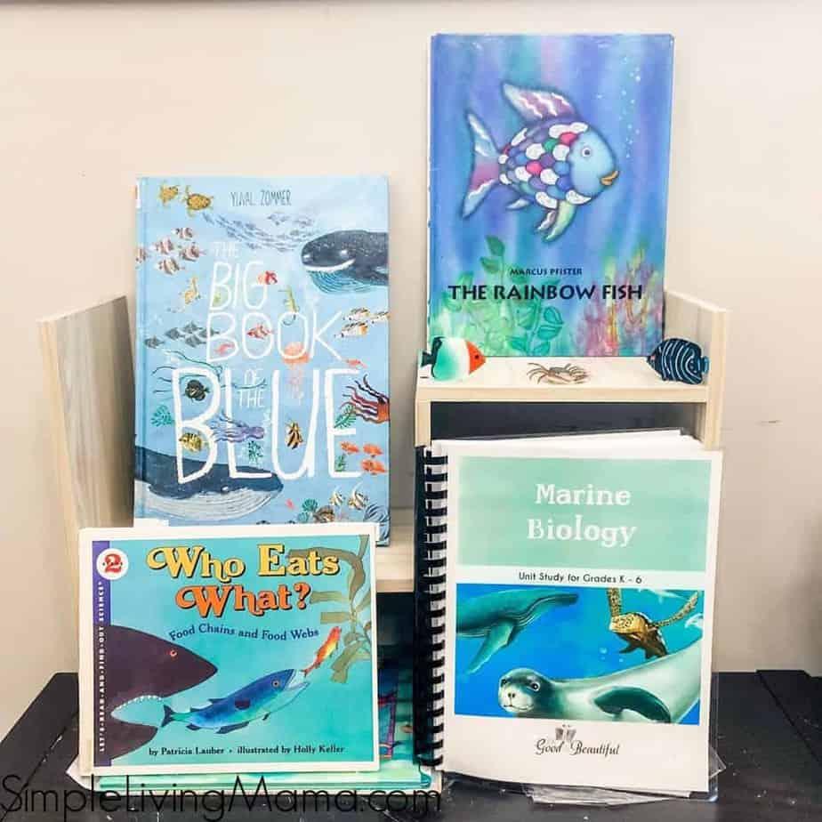 marine biology unit study