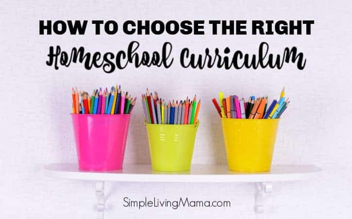 How To Choose Homeschool Curriculum for Your Family