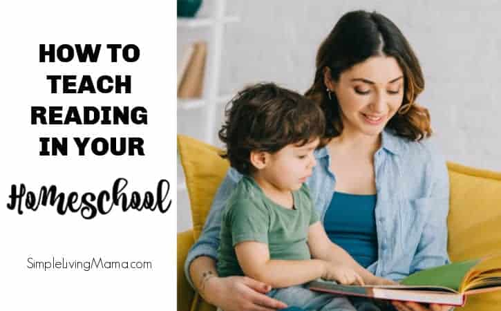 How We Teach Reading in our Large Family