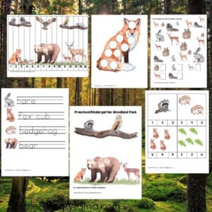 Pre-K/K Woodland Animal Activity Pack