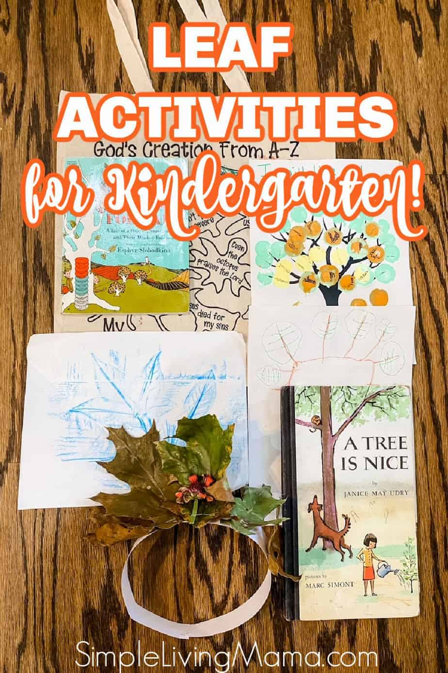 Leaf activities for kindergarten