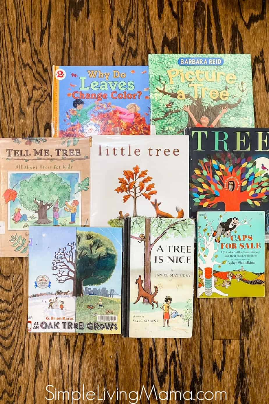 leaf books for kindergarten