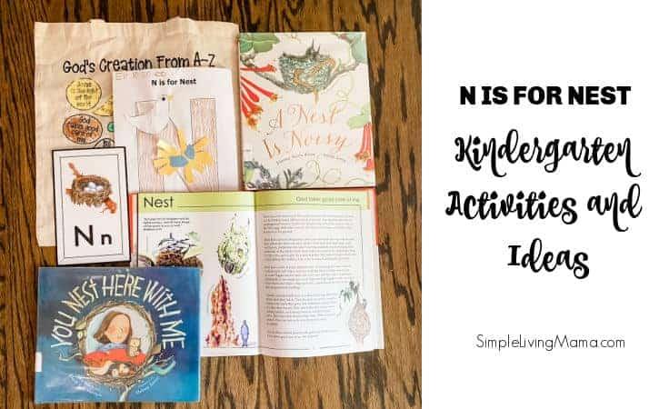 N is for Nest Activities for Kindergarten
