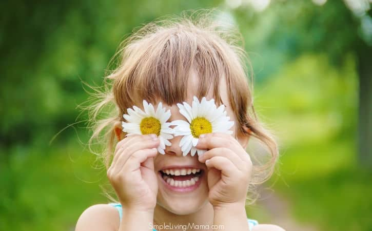 Flower Theme Preschool Activities and Lesson Plans