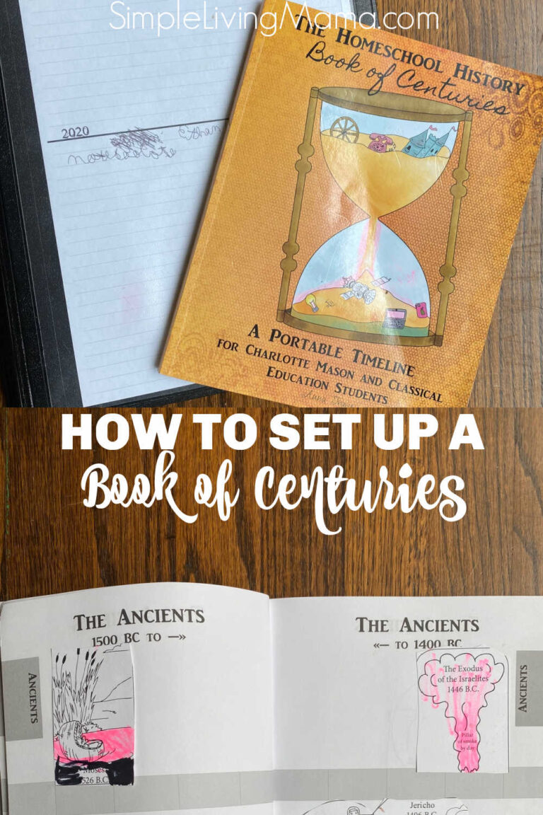 How To Set Up a History Book of Centuries Timeline