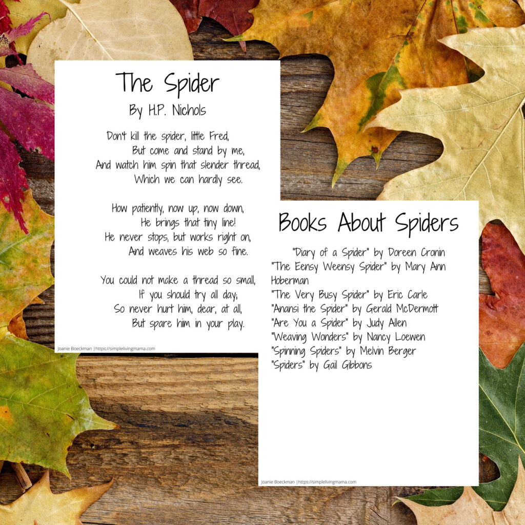 Spider poetry and booklist